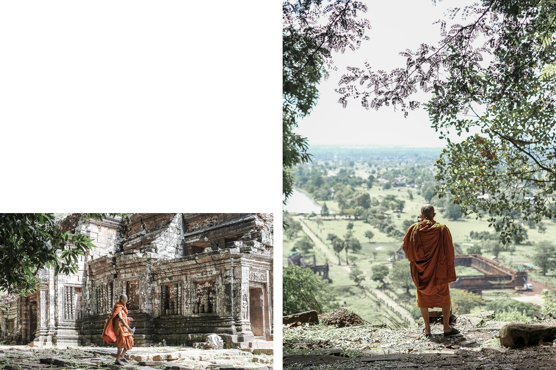 Monk in the temple