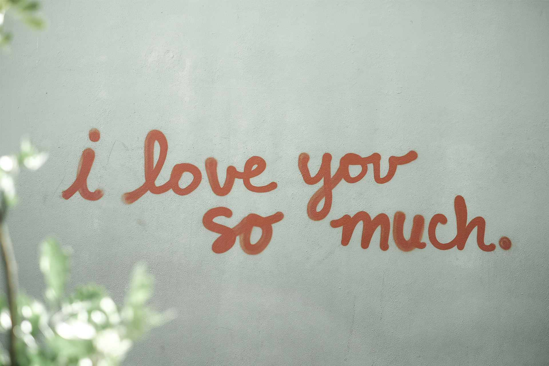 graffiti on the wall reading i love you so much, Austin Tx