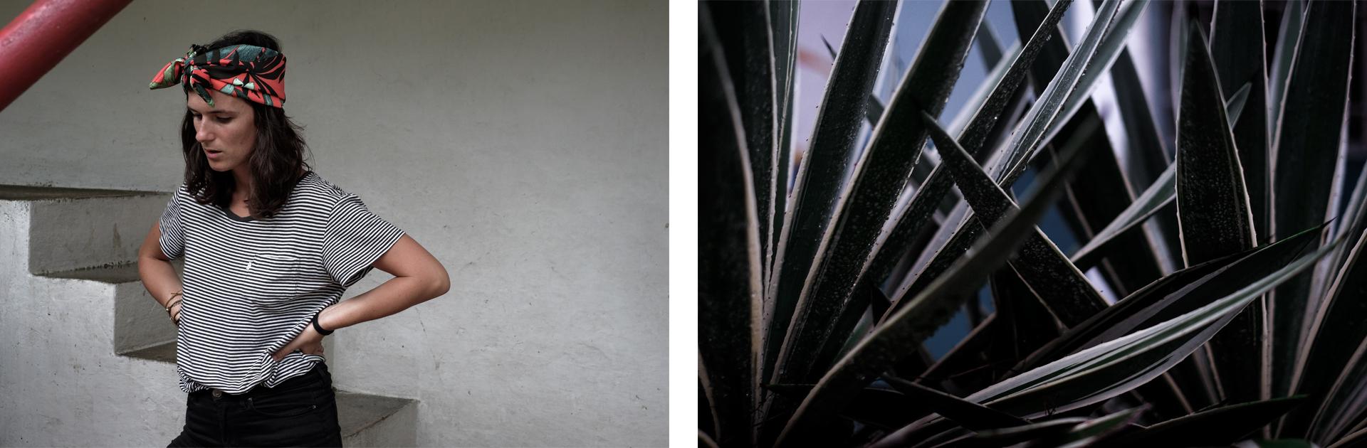 floriane plants