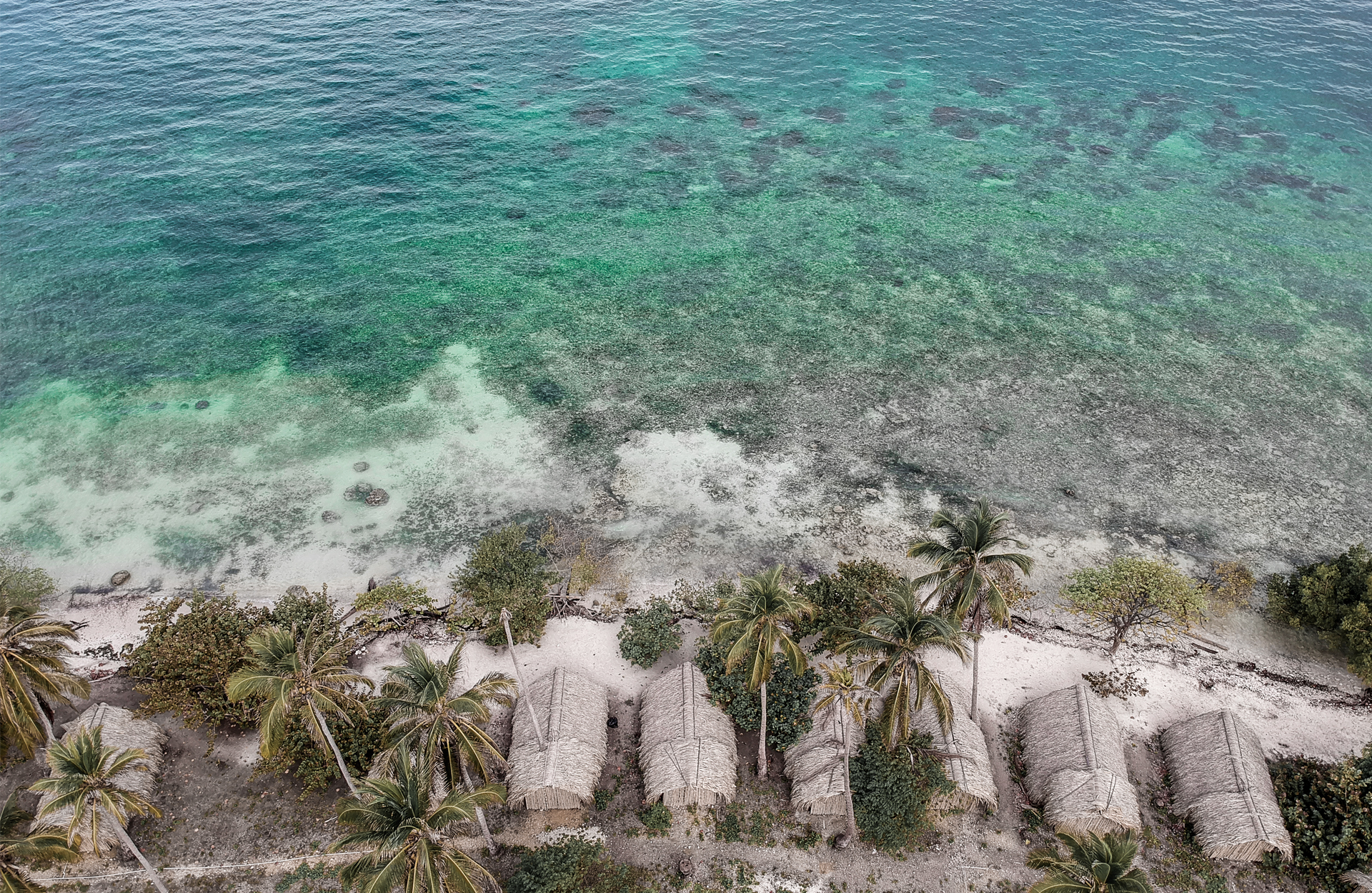 drone photo line water palm trees huts
