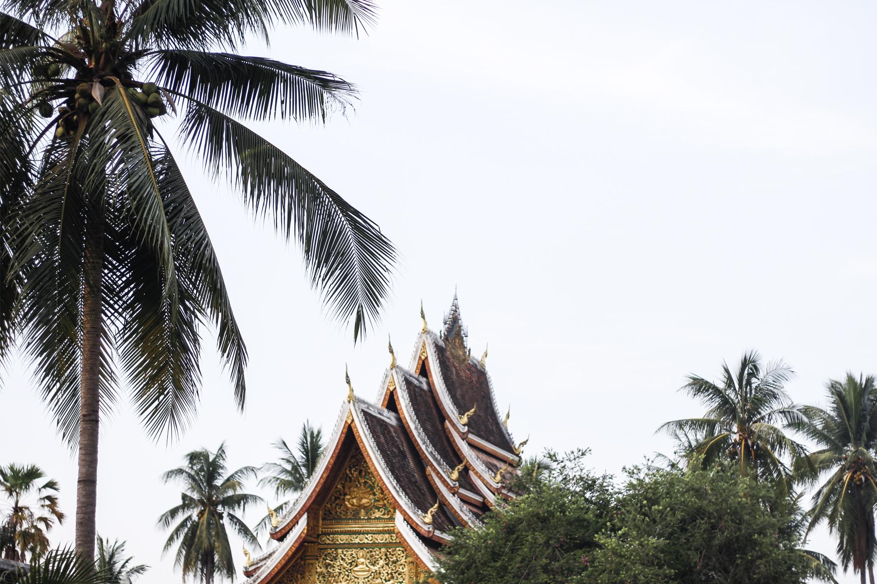 Luang Prabang Laos jungle temple