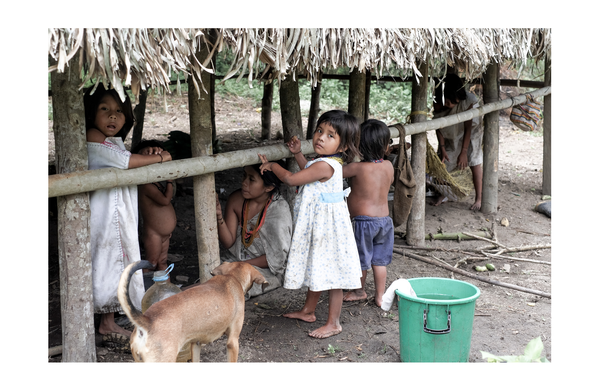 the kogui meet the tribe kids in the hut