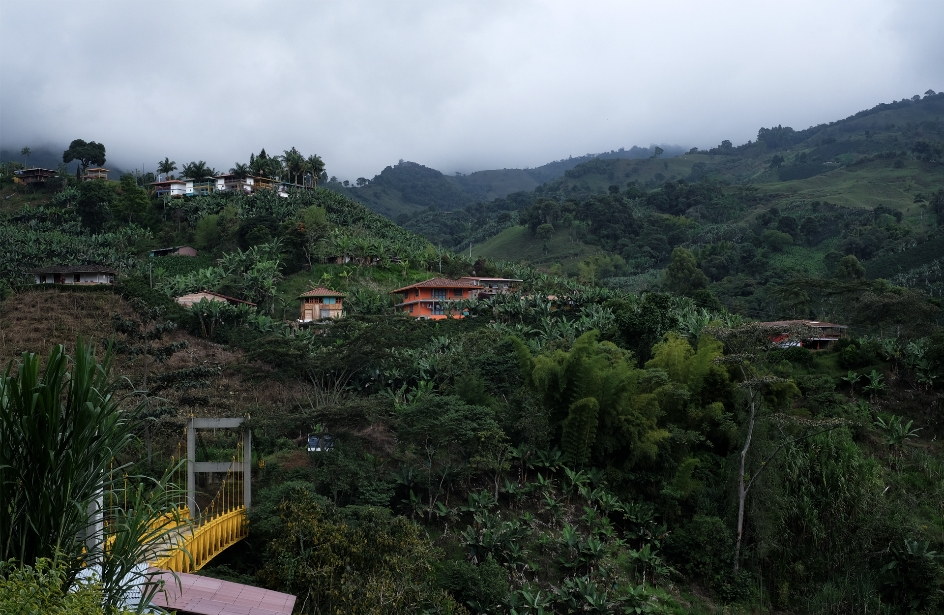 Authentic Colombia view of the bridge yellow banana trees injungle cloudy