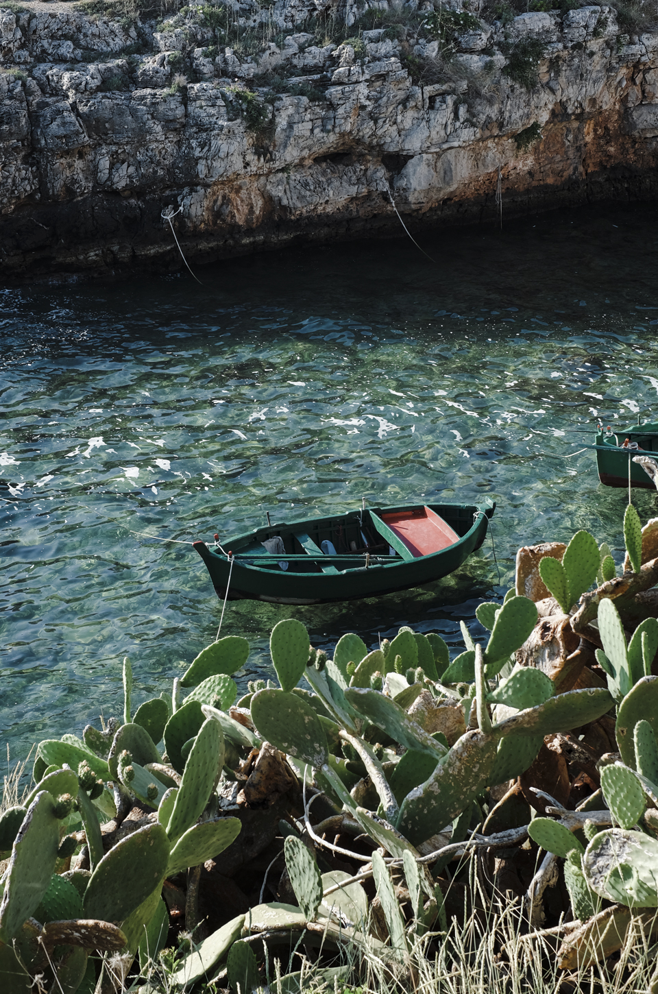 A glimpse of Puglia, boat, sea and catus in Port'alga