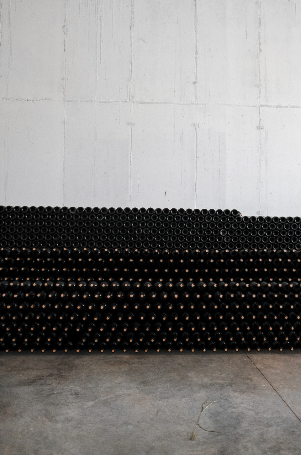 Stacked bottles of wine, at winery, Albania