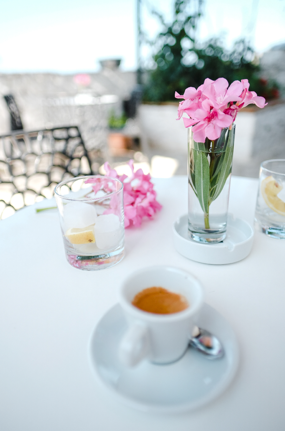 cafe and pink flowers, Albania road trip