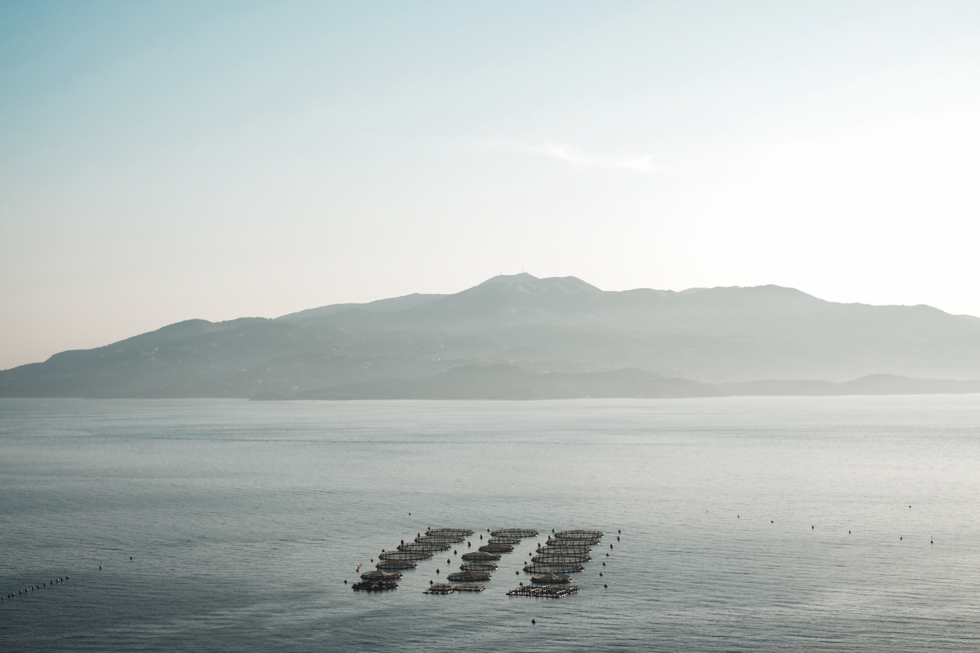 oyster farms near Kamil, best beaches in the Riviera